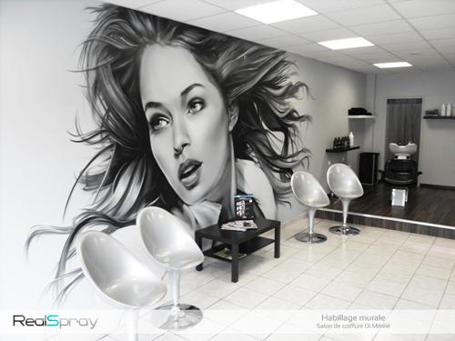 La Peinture Pour Un Salon De Coiffure : Artiste peintre décorateur créateur de peinture murale