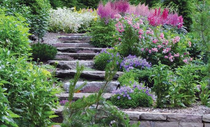 Fr d ric labrador jardinier paysagiste am nagement et entretien de vos parcs et jardins for Recherche jardinier pour entretien jardin